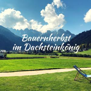 Erfahrungsbericht – Bauernherbst im Dachsteinkönig