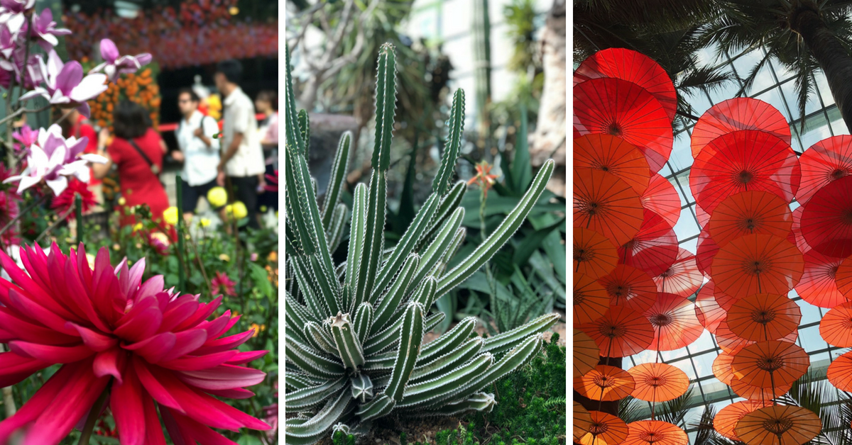 Flower Dome Singapur