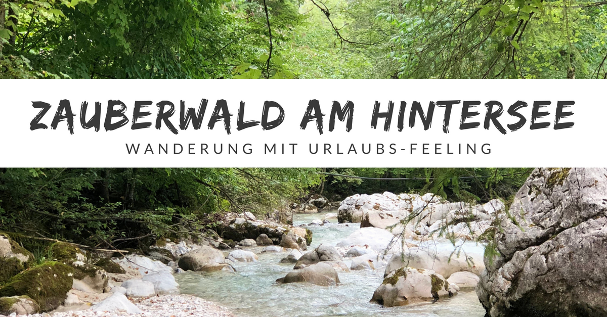 Der Zauberwald am Hintersee - Wanderung und Ausflug mit Kindern
