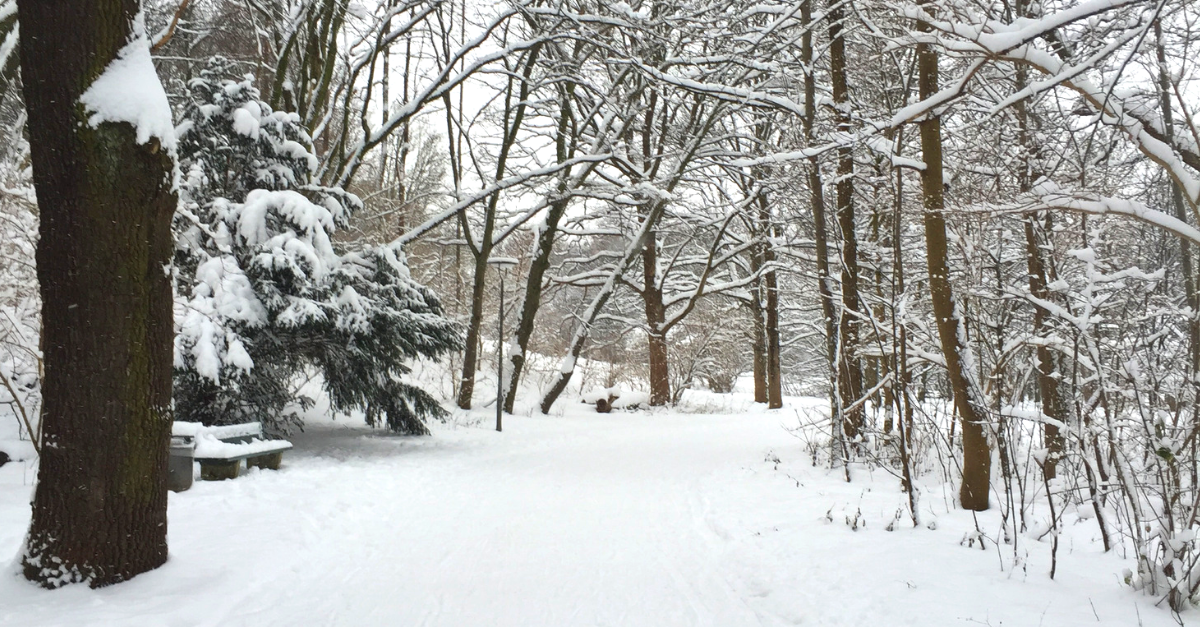 Wandern in Bayern im Winter