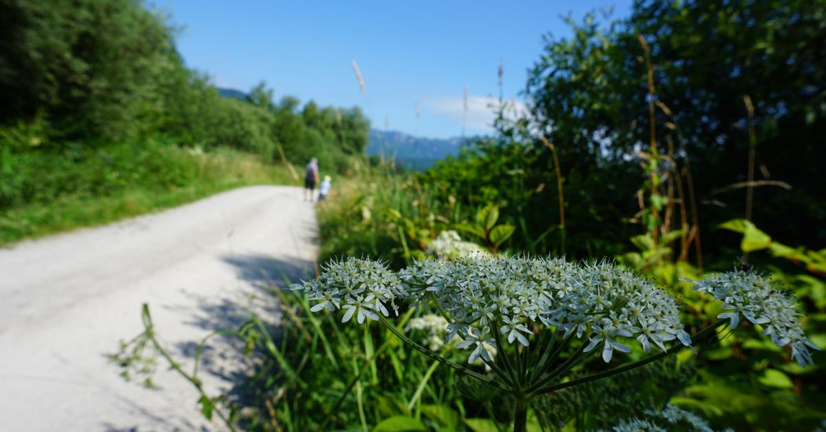 Wanderung Benediktbeuern