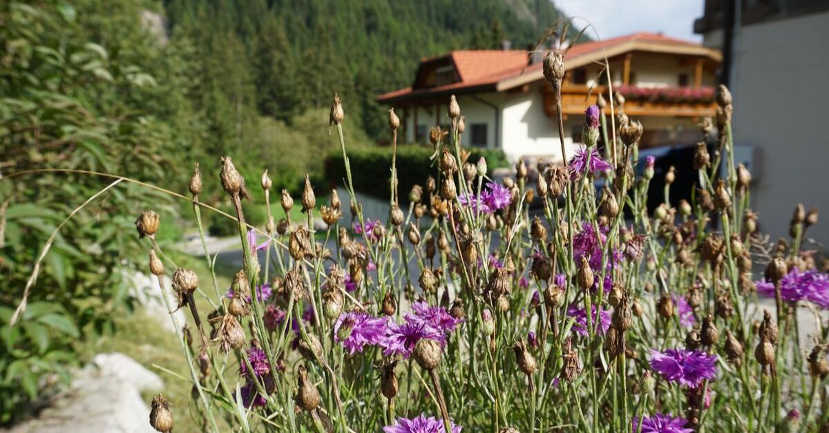Obereggerhof Südtirol
