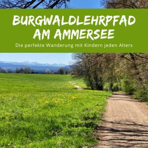 Burgwaldlehrpfad Diessen mit Kindern