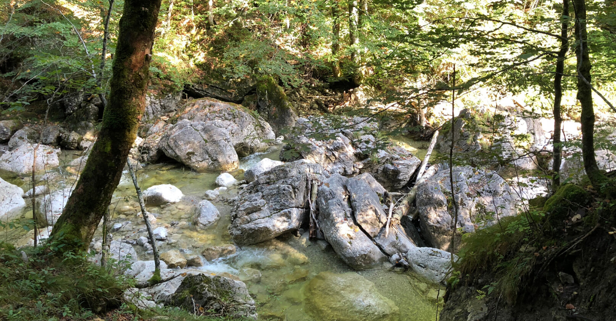 Spaziergang Jachenau